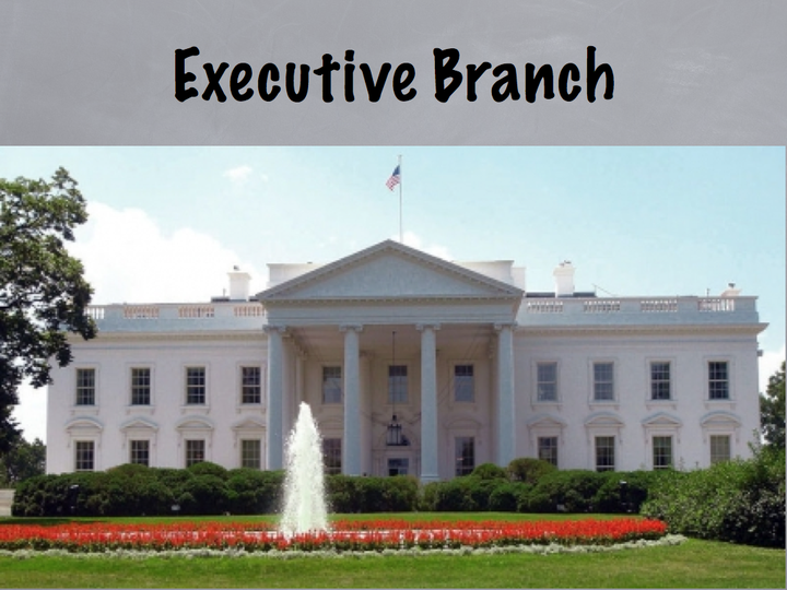 us executive branch of government Us politics & government  executive branch trump exerts executive power in consumer financial protection bureau leadership battle  find us.