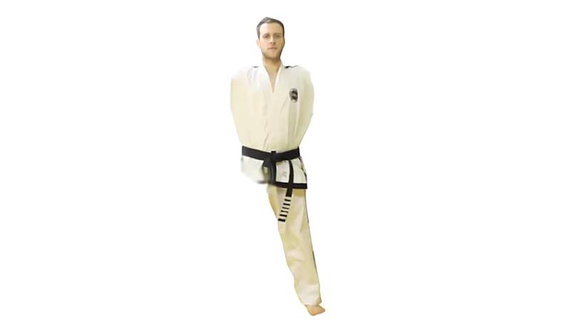 Taekwondo Sparring Techniques