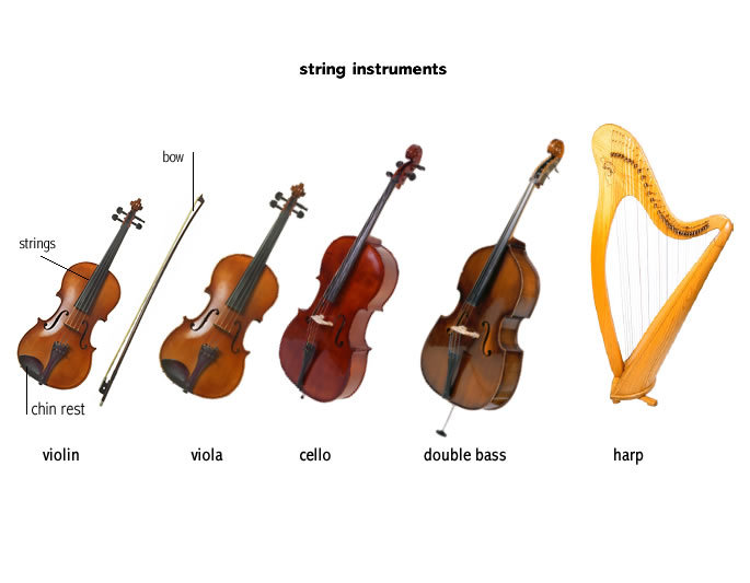 instruments of orchestra the string section. Black Bedroom Furniture Sets. Home Design Ideas