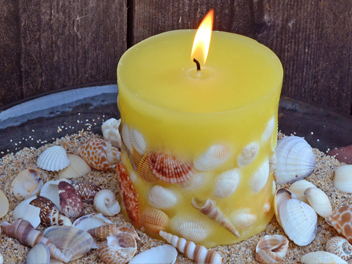 Learn To Make A Shell Embedded Candle!