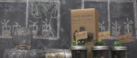 DIY Mason Jar Herb Garden Terrarium