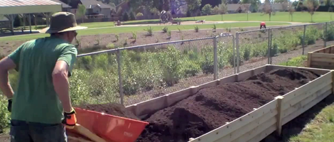 Easy Way to Fill Raised Garden Beds
