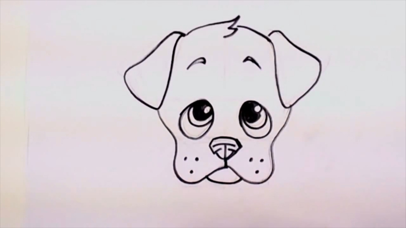 Drawing a cute cartoon puppy face