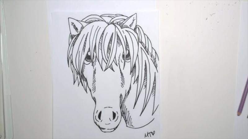 how to draw a cute cartoon horse