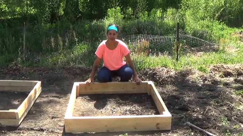 Crafty Gemini Raised Garden Bed