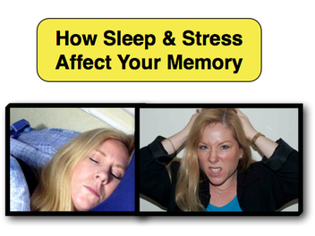 How Sleep & Stress Affect Memory